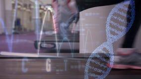 Het uitoefenen in een tredmolen en een DNA-schroef in de voorgrond stock videobeelden