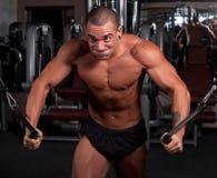 Het uitoefenen van de bodybuilder Royalty-vrije Stock Afbeeldingen
