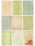 Het uitstekende BloemenBlad van de Collage van het Damast Stock Foto