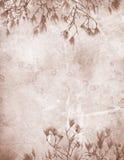 Het uitstekende document van de magnolia stock foto's