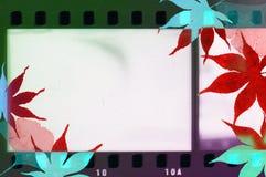 Het uitstekende kader van de filmstrook met de rode en blauwe grenzen van esdoornbladeren Stock Fotografie