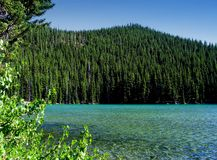 Het uitstekende Meer van Elanden, Oregon royalty-vrije stock fotografie