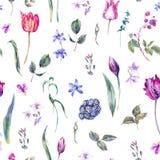 Het uitstekende Naadloze Patroon van de Bloemenwaterverf, Purpere Tulpen Stock Afbeelding