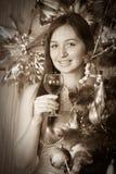 Het uitstekende portret van Kerstmis royalty-vrije stock afbeelding