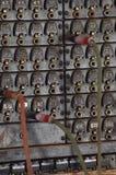 Het uitstekende Schakelbord van de Telefoon Royalty-vrije Stock Fotografie