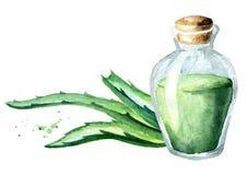 Het uittreksel van aloëvera en groene bladeren Waterverfhand getrokken illustratie Stock Afbeelding