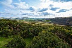 Het uitzicht van de winterdartmoor Stock Foto's
