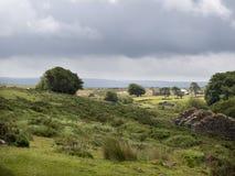 het UK, Devon, Dartmoor, Poeder maalt dichtbij Postbridge stock fotografie