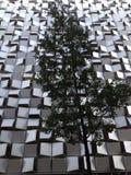 Het UK Engeland Yorkshire Sheffield Modern Architecture Stock Foto