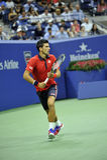 Het US Open 2015 van Djokovicnovak (134) stock foto