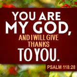 Het 118:28 van de dankzeggingspsalm stock foto