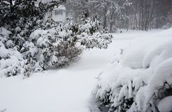 Het van de de blizzardsneeuw van snowzillajonas de winteronweer op 23 Januari, 2016 Royalty-vrije Stock Fotografie