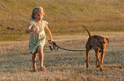 Het van een hond pret lopen Stock Afbeelding