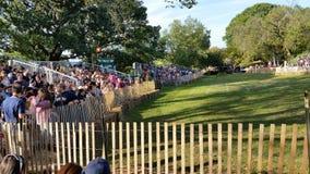 Het van het het Festival @ Fort van 2014 Middeleeuwse Park NYC 169 van Tryon Stock Afbeeldingen