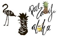 Het van letters voorzien uitdrukking - Aloha en Paradise Samenstelling met waterverfhand getrokken kokosnoot Achtergrond voor voe vector illustratie