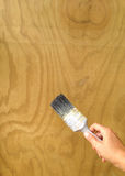 Het van toepassing zijn woodstain op triplex met een oude verfborstel Stock Fotografie