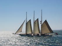 Het varen aan de Wijngaard Royalty-vrije Stock Fotografie