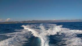 Het varen aan Vis Royalty-vrije Stock Foto