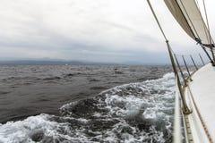 Het varen in bewolkt weer yachting Reis Stock Afbeeldingen