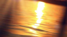 Het varen in de zonsondergang op vaag weerspiegeld water stock video