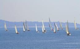 Het varen het begin van regattacor caroli Stock Foto