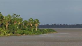 Het varen onderaan de rivier van Amazonië stock footage