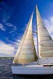 Het varen op Baai Elliott stock afbeelding
