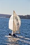 Het varen op de Haven van Sydney Stock Afbeeldingen