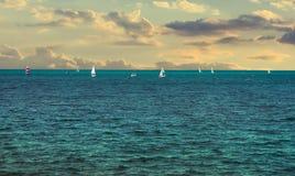 Het varen regatta Stock Afbeelding