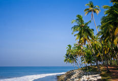 Het Varkalastrand whise stenenpalm en bomen op een zonnige dag Royalty-vrije Stock Afbeelding