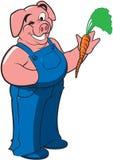 Het varken dat van de landbouwer een wortel houdt Royalty-vrije Stock Afbeelding