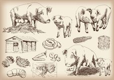 Het varken-fokken stock illustratie