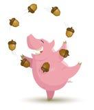 Het varken jongleert met eikels Stock Foto's