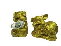 Het varkensstandbeeld van China ` s stock foto