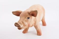 Het varkensstandbeeld van het exemplaar Royalty-vrije Stock Foto