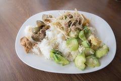 Het varkensvlees van de rijstkatvis Royalty-vrije Stock Foto