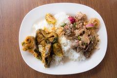 Het varkensvlees van de rijstkatvis Royalty-vrije Stock Foto's