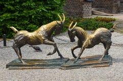 """Het vechten geiten, PoznaÅ """", Polen Royalty-vrije Stock Foto"""