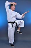 Het vechten van de karate houding Stock Foto
