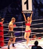 Het Vechten van de krijgskunst Kampioenschap 15. Stock Fotografie