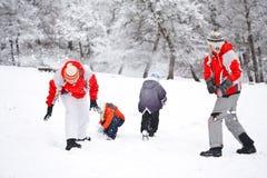 Het vechten van de sneeuw Royalty-vrije Stock Fotografie