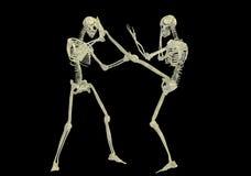 Het vechten van het skelet Stock Afbeelding