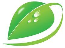 Het vector grote groene blad, dauw daalt, organisch, natuurlijk, aardsymbool, milieu bedrijfsembleem, groen pictogramsymbool Stock Afbeelding