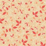 Het vector Naadloze Patroon van de Bloem Royalty-vrije Stock Afbeeldingen