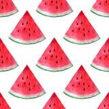 Het vector naadloze patroon van de waterverfhand getrokken watermeloen Royalty-vrije Stock Fotografie