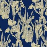 Het vector naadloze patroon van irissenbloemen royalty-vrije illustratie