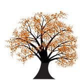 Het vector ontwerp van de de herfstboom vector illustratie