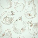 Het vector patroon van het Fruit Stock Foto