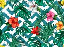 Het vector tropische naadloze patroon van de bladerenhibiscus Stock Afbeeldingen