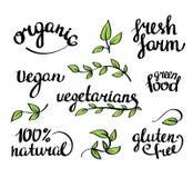 Het vector van letters voorzien - organisch natuurvoeding, veganist en vegetariërsmenu royalty-vrije illustratie